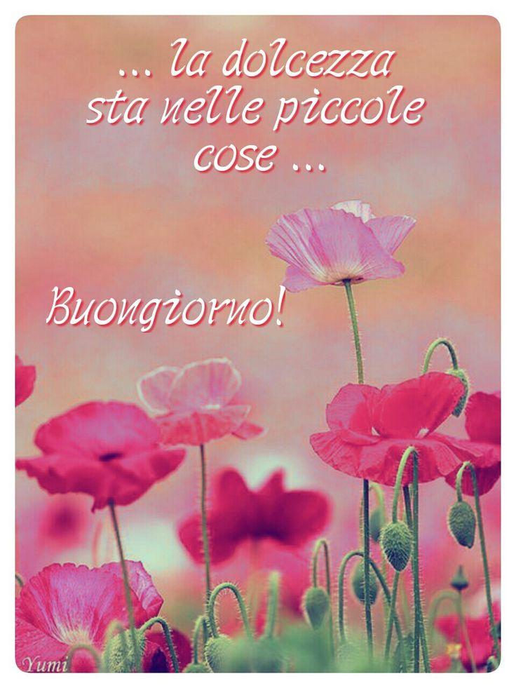 http://ift.tt/2h3RJNn Frasi di buongiorno sms di buongiorno messaggi di buongiorno buongiorno per te bongiorno per whatsa
