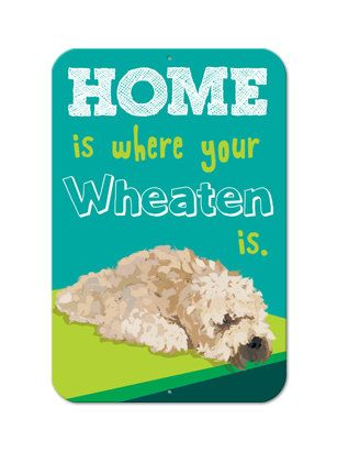"Home Is Where Your Wheaten Is - Aluminum Sign 12X18"". $34.95, via Etsy."