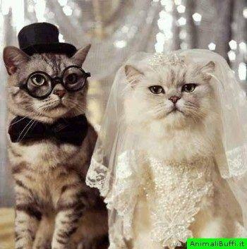wedding day :-)