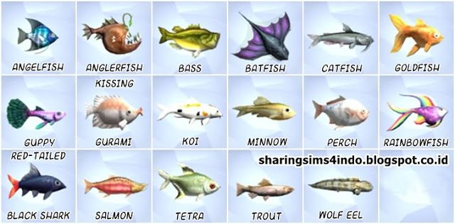 Fish Collections in Oasis Springs #sims4 #world