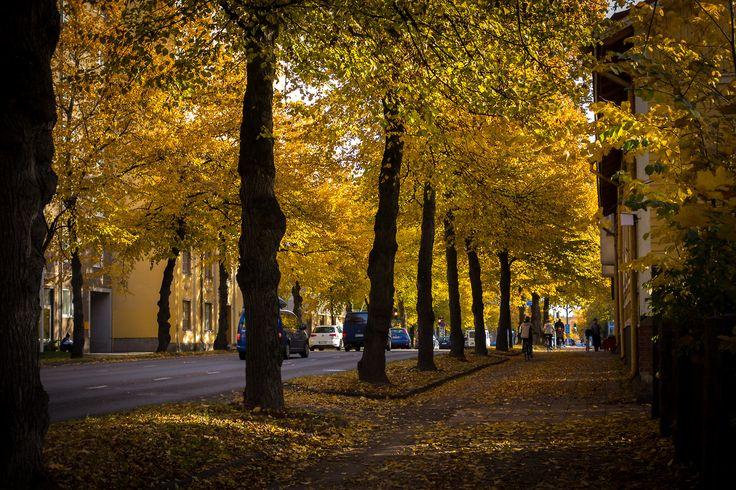 Syksyinen kaupunkini Turku
