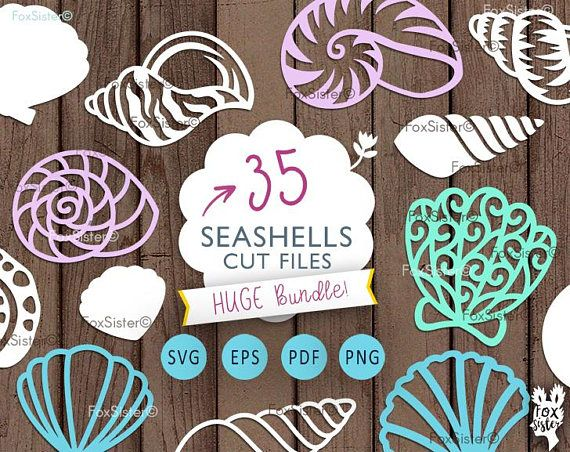 Sea Shells SVG Bundle 35 Seashells svg Beach svg Ocean Cut