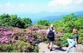 10 Mountain Hikes For Summer - Hiking & Biking in NC - North Carolina Travel & Tourism
