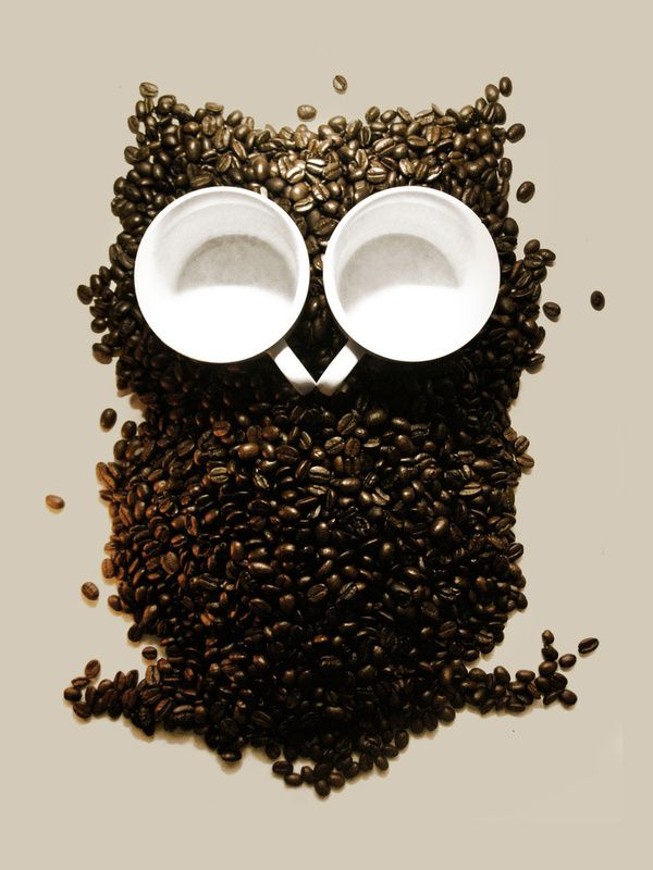 Owl coffee beans.: Dinners Recipes, The Artists, Coffee Beans, Memorial Beans, Memorial Owl, Night Owl, Bridal Shower, Food Art, Offices Supplies