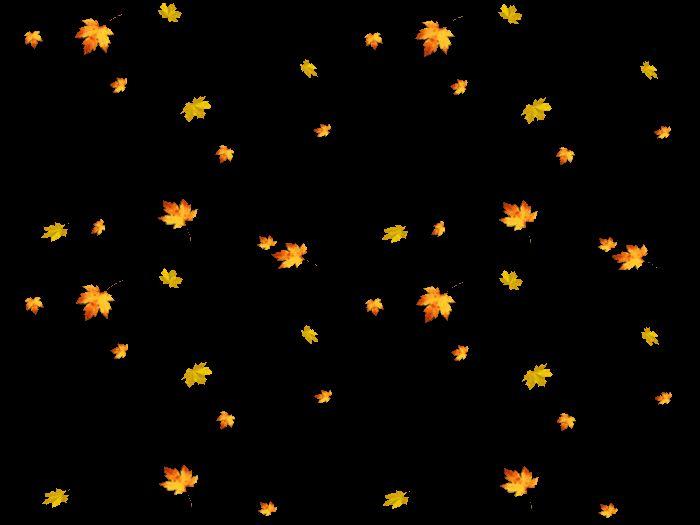 Картинки анимации падающие листья