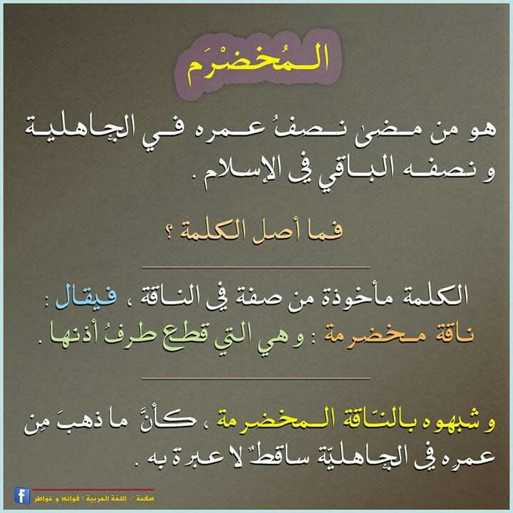 أصل كلمة المخضرم، في اللغة العربية