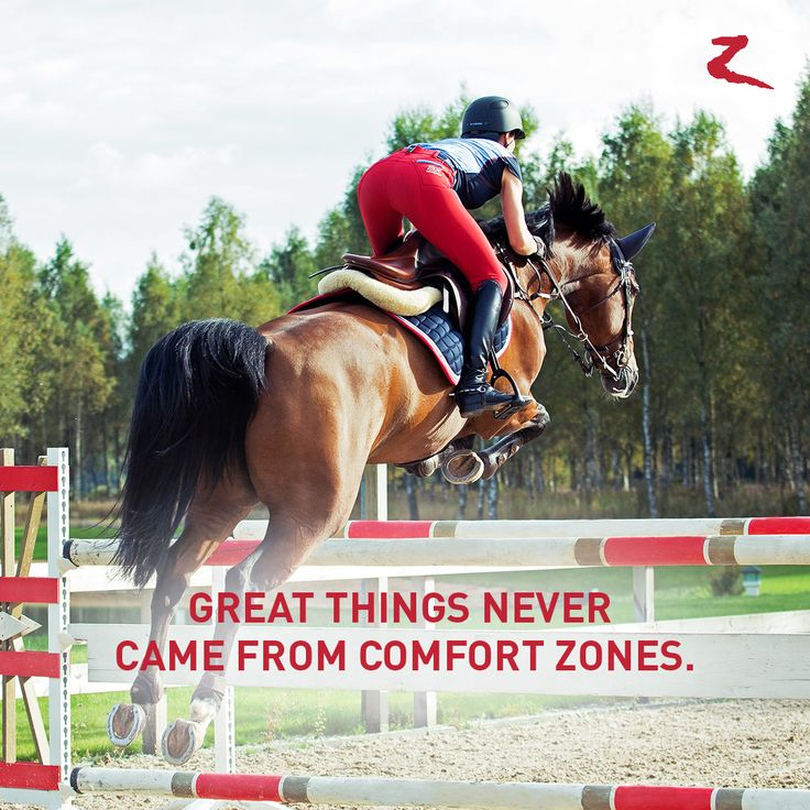 Great things never came from comfort zones. horse, jump, equestrian