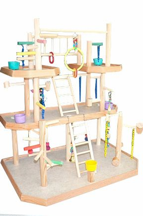 Parrot Play Gym is ideal for: Cockatiels, Parakeets, Lovebirds, Senegals, Myers, Red Bellies, Quakers, conures such as Green Cheeks, Maroon Bellies.