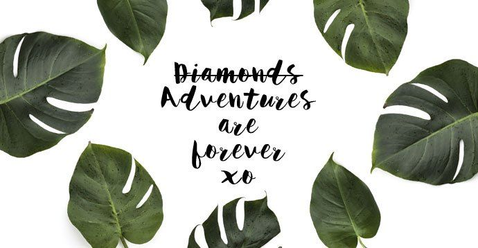 Adventures are forever quote