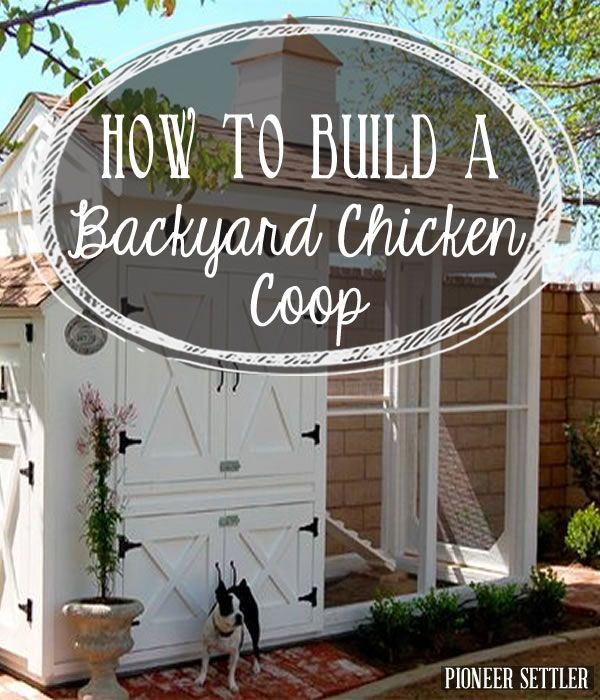 DIY Chicken coop with step by step tutorial. |  http://pioneersettler.com/build-backyard-chicken-coop/