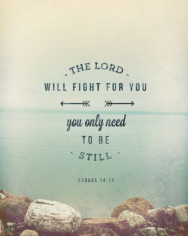 The Lord will fight for you; you only need to be still. -Exodus 14:14