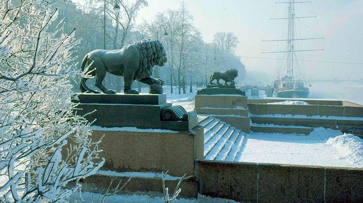 Мраморные львы у Дворцового моста.  Адмиралтейская набережная Санкт-Петербурга.