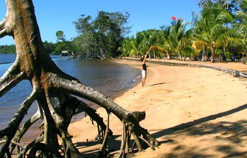 #Suriname