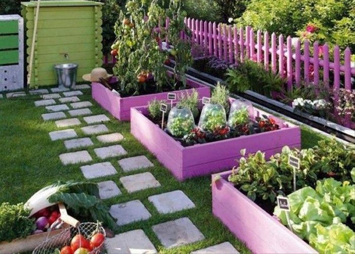 This is also portraying a kind of professional touch in the gardening where we have classified different plants according to their type and we have separated them with the help of pallet wood which is quite inexpensive.
