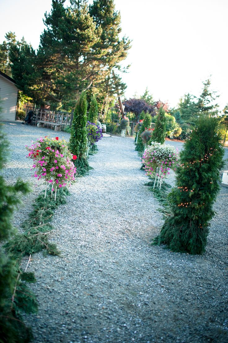 flower and cedar branch path from ceremony to reception