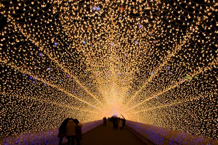 Nabana no Sato can claim to have one of the biggest and best illumination displays in all of Japan.