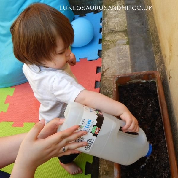 Watering Sunflowers with DIY Watering Can from lukeosaurusandme.co.uk