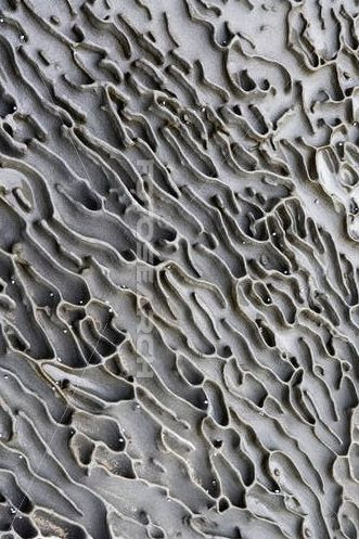 Rock pattern  #patterns and #textures