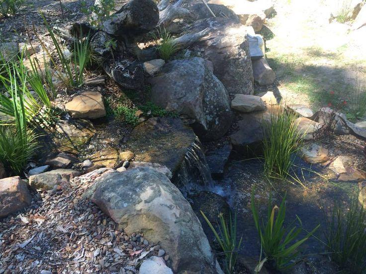 Pin by Aquascape Supplies Australia on Aquascape ...