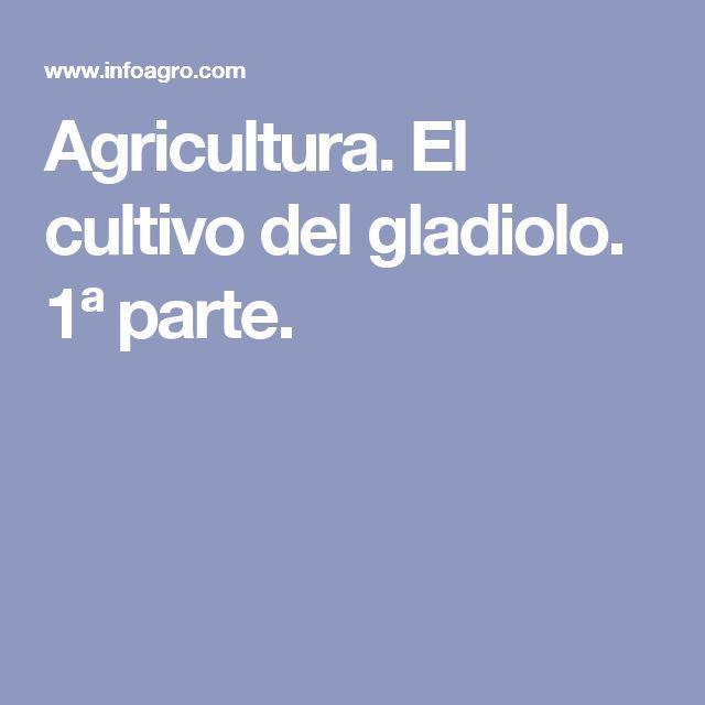 Agricultura. El cultivo del gladiolo. 1ª parte.