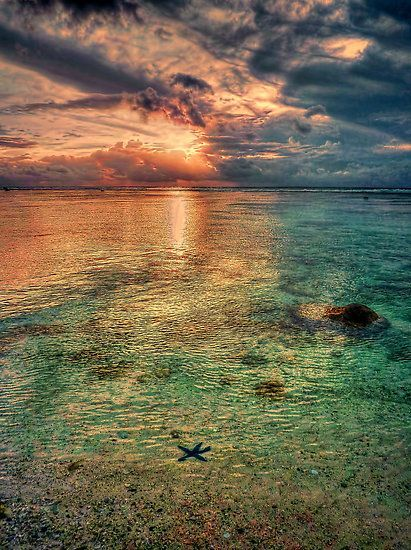 Star fish and sunset in Rarotonga!