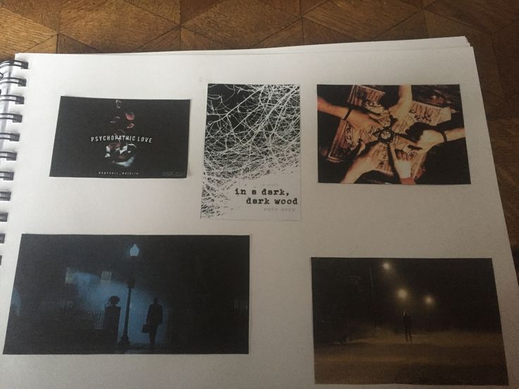 Als voorbeelden heb ik gekozen voor verschillende soorten prenten. Sommige afbeeldingen komen uit films andere zijn zinnen die in het thema thriller passen. Ook heb ik gekozen om donkere tekeningen te gebruiken die het gevoel van thrillers opwekken.