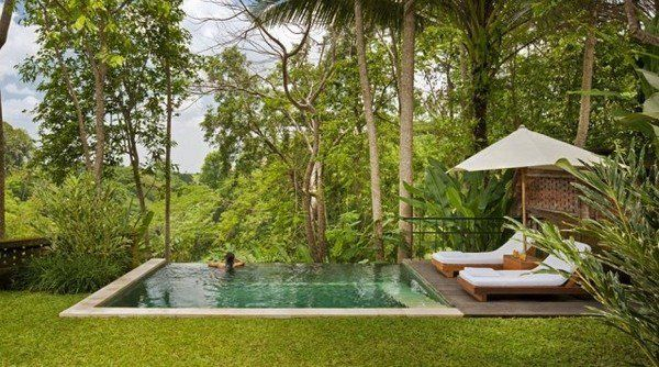 small infinity pool sun loungers parasol small garden decor ideas forest house