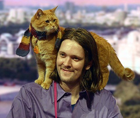 quick reads street cat bob james bowen skillswise