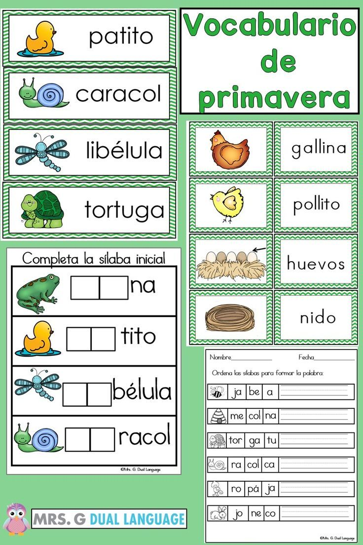 Spanish Word Wall Cards Spring Vocabulary In Spanish Great For Students In Bilingual Dual Language Or Sp Spring Vocabulary Learning Spanish Vocabulary Cards [ 1104 x 736 Pixel ]