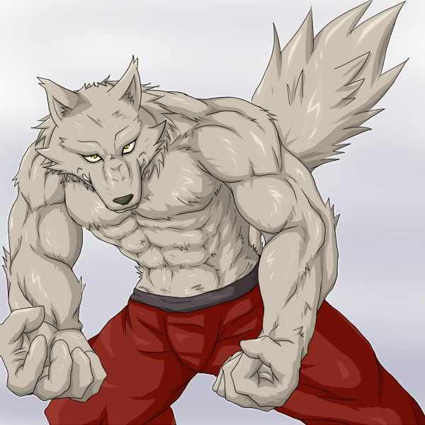 Anthro Wolf Male Anthro Wolf Male Muscle