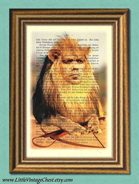 Game of Thrones TYRION THE LION   Dictionary by littlevintagechest, $7.99