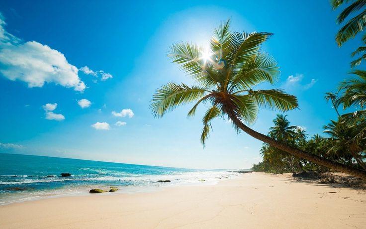 #Caribbean #Beach #Wallpaper #PalmTrees Caribbean cuisine, Sea, 4K resolution, Image - Follow @extremegentleman for more pics like this!