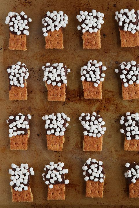 S'mores Mini Dippers. Graham Crackers dipped in chocolate, dipped in mini marshmallows. So fun for parties!
