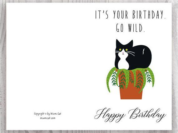 Funny Cat Birthday Cards Instant Download Funny Tuxedo Cat Printable Birthday Cards Go Wild Black And White Cat Digital Download Cat Birthday Card Cat Birthday Cards Funny Cat Birthday