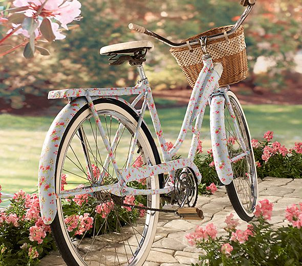 The Basket Bike Girl®: Fotografia