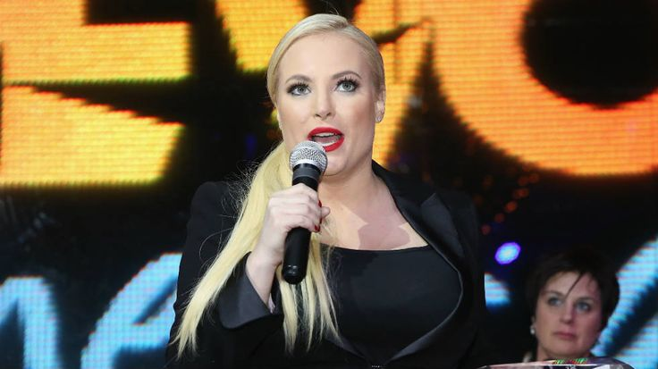 """""""Trump slammed my dads service when both of my brothers were (and still are) currently serving,"""" Meghan McCain says."""