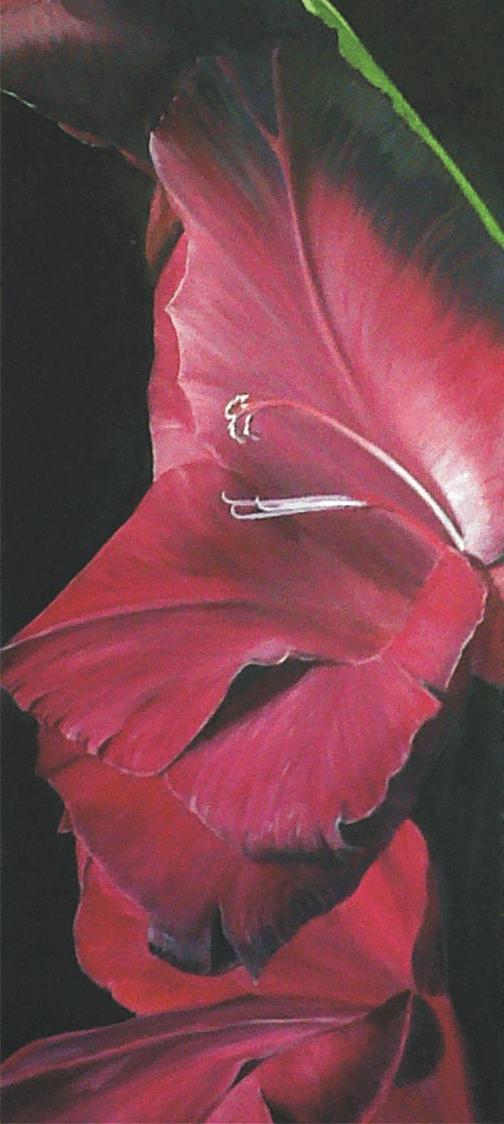 Burgundy Bloom.   60 x 110cm.  Oil on canvas