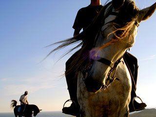 A HERDADE DO PESSEGUEIRO em Porto Covo tem para lhe oferecer passeios a cavalo à beira mar, por trilhos sobre nas dunas, ou em serras e vales que se sucedem. // Herdade do Pessegueiro offers you what for many people is considered a symbol of a true paradise: horseback riding on the beach, on sand dune tracks or on a succession of hills and valleys with Alentejo's coast line as a background scenario.