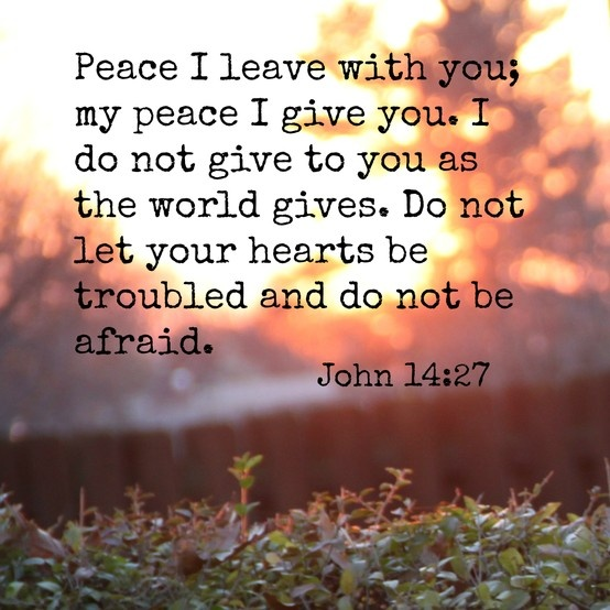 O God, Your Peace Is So Sufficient, You Are More Than Enough. Your Peace Equips Me To Tread Any Storm.
