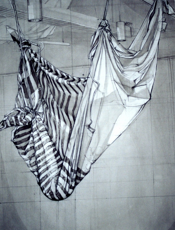 Pencil Drawing. Hang fabric from the ceiling tiles and add some spotlights. A classic drawing exercise... and still a good one... I remember doing this in high school.