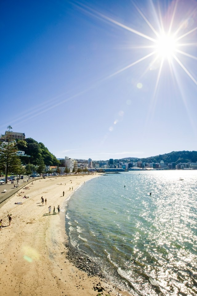 This is what Wellington looks like on a sunny day!