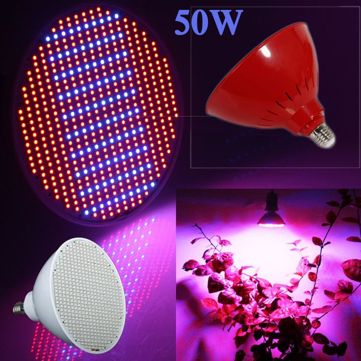 Unique New hydroponics lighting AC V W E RED BLUE SMD LEDS Hydroponic LED