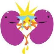 kidney I love it