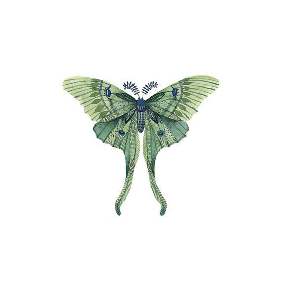 Watercolor Luna Moth Tattoo Pattern Tattoo By Arrowtattoo On Etsy Moth Tattoo Luna Moth Tattoo Tattoo Graphic