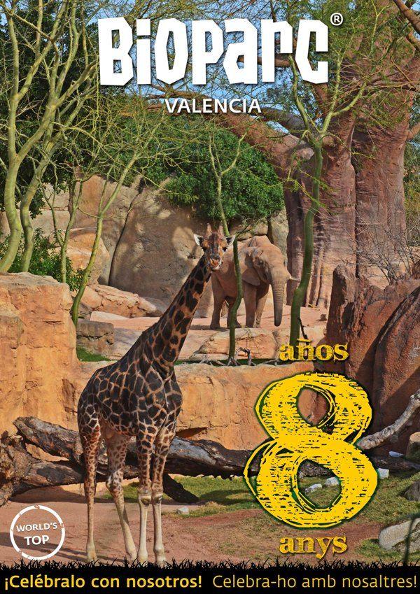 BIOPARC Valencia celebra este mes de febrero su 8º aniversario - http://www.valenciablog.com/bioparc-valencia-celebra-este-mes-de-febrero-su-8o-aniversario/