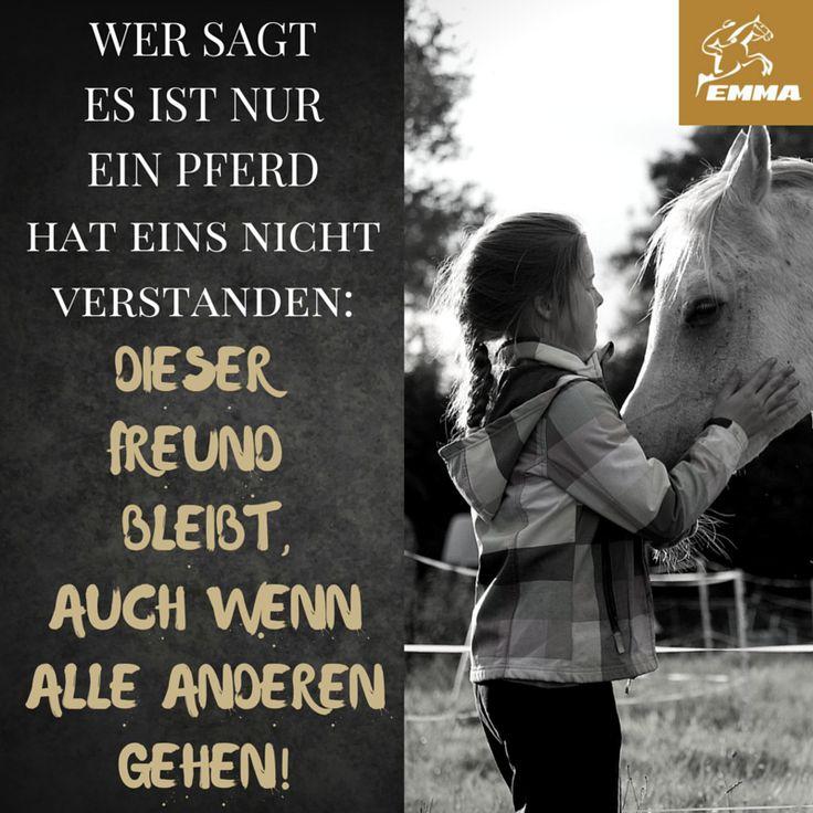 Schön Pferdesprüche U0026 Vitamin E Pferd Emma Pferdefuttershop.den.