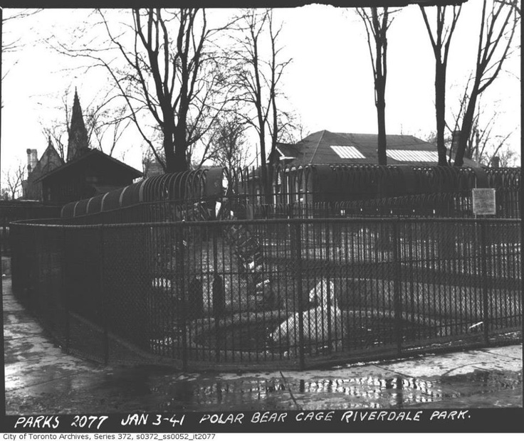 Polar Bear Cage at the Toronto Riverdale Zoo Jan.3rd, 1941