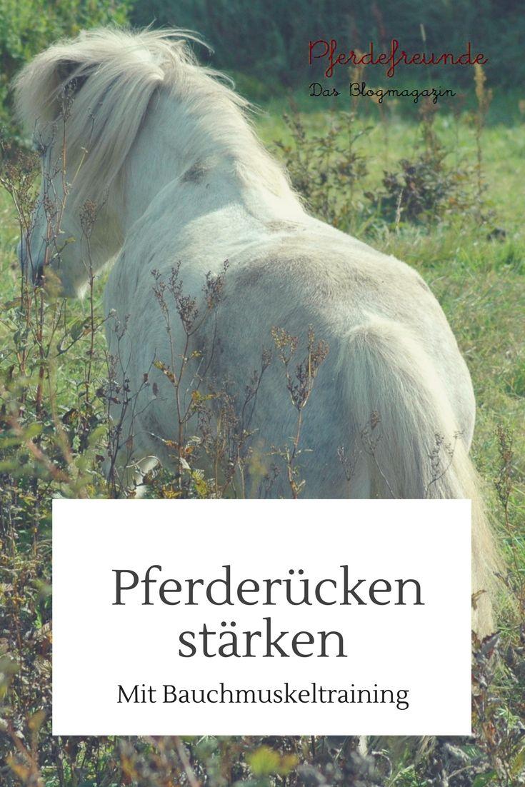 Pferderücken stärken mit Bauchmuskeltraining