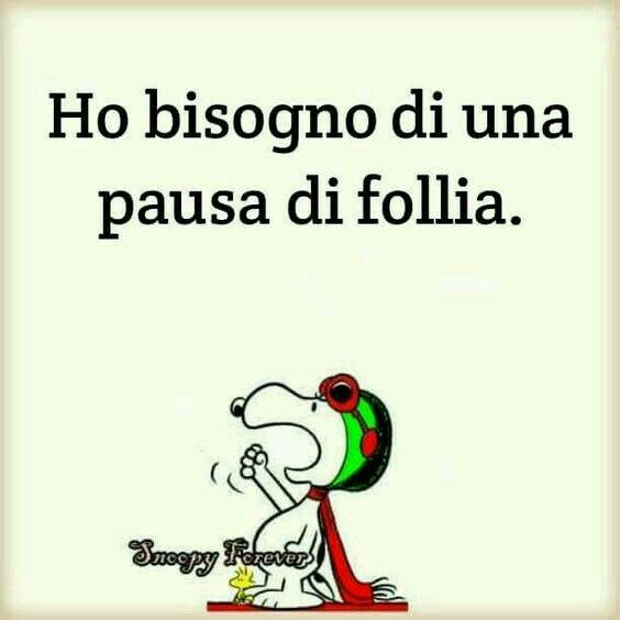 Pausa di #follia!