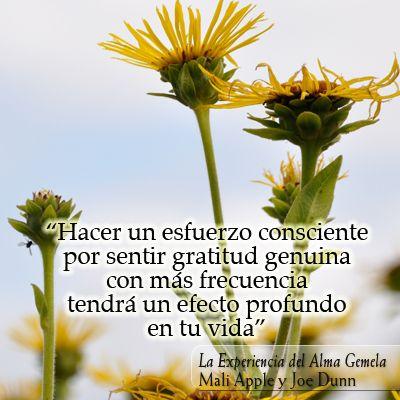 Hacer un esfuerzo consciente por sentir gratitud genuina con más frecuencia tendrá un efecto profundo en tu vida. #gratitud